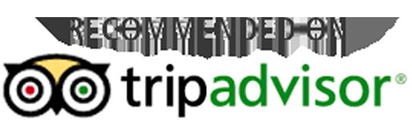 Trip Advisor 2
