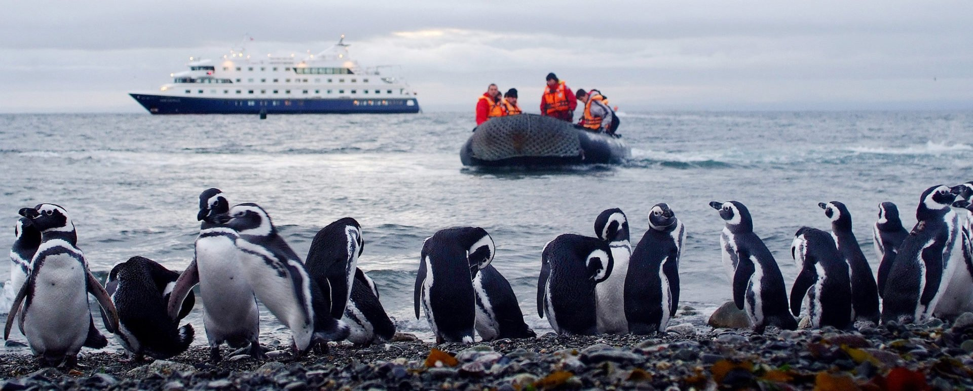 Patagonia cruise activities
