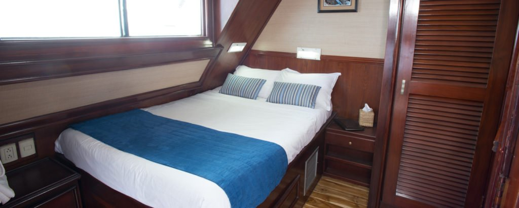Galapagos Cruise Letty Dolphin Couple Cabin