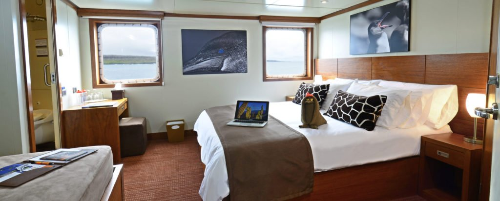 Galapagos Cruise Eclipse Luxury Small Ship Deluxe Couple Cabin