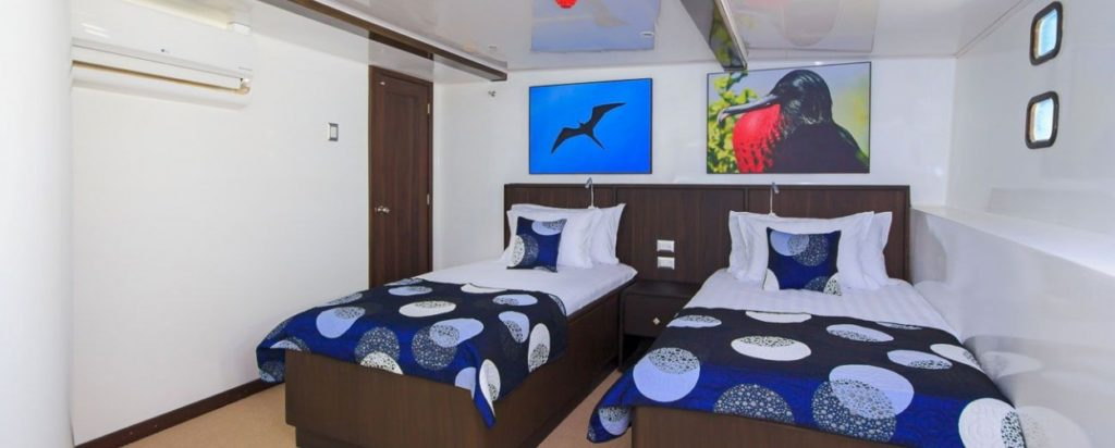 Galapagos Cruise Natural Paradise Lower Deck Standard Twin Cabin