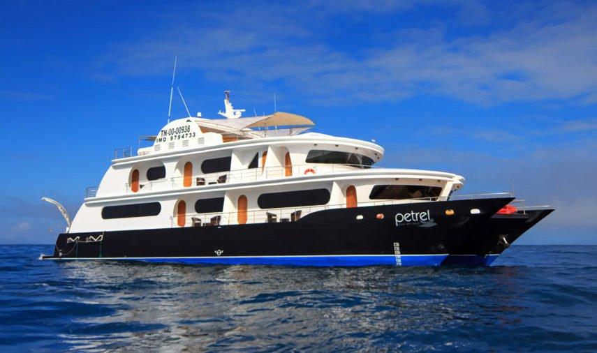 Petrel Catamaran exterior